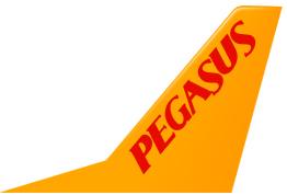 pagasus_ucak_bileti